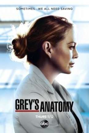 A Anatomia de Grey - 17ª Temporada Legendada Séries Torrent Download capa