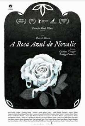 A Rosa Azul de Novalis Filmes Torrent Download capa