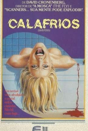 Calafrios Filmes Torrent Download capa
