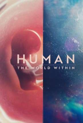 Corpo Humano - Nosso Mundo Interior - 1ª Temporada Completa Séries Torrent Download capa
