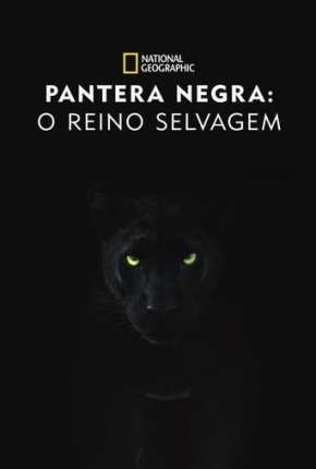 Pantera Negra - O Reino Selvagem Filmes Torrent Download capa