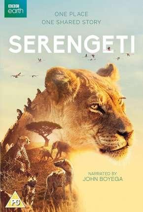 Serengeti - 2ª Temporada Completa Legendada Séries Torrent Download capa